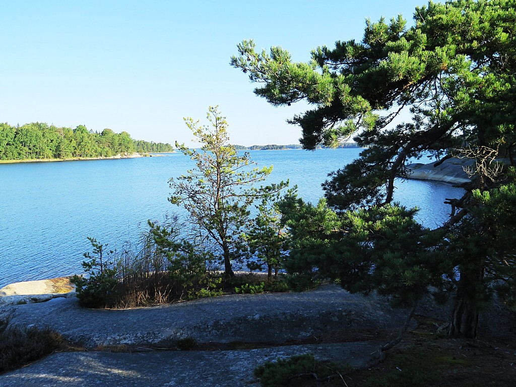Outside Stockholm, an archipelago of forested islands greets visitors. Here, the granite-smooth shoreline of Finnhamn Island at daybreak. Photo/Keith Schneider