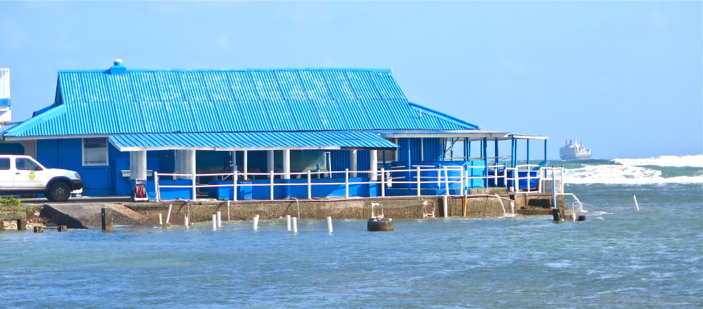 The Smithsonian Tropical Research Institute's Galeta Point Marine Laboratory, established in 1966 on the Caribbean shoreline near Colon, was formerly a U.S. Naval installation. Photo/Keith Schneider
